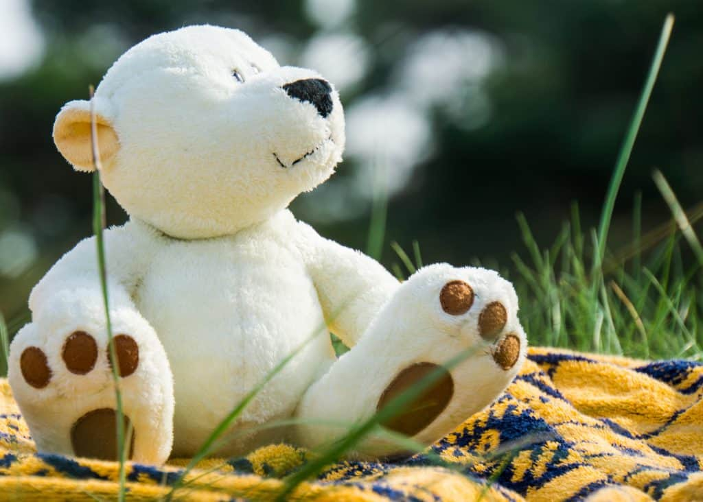 The Best Stuffed Animals: Picture of a stuffed bear on a picnic blanket looking up at the sun